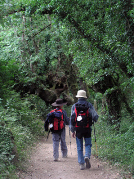 Villaviciosa auf dem Sternenweg in Asturien